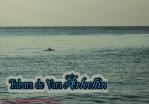 Tabara ARLECHIN- Editia de vara, Constanta 5 - 11 iulie 2013 (252 of 790)