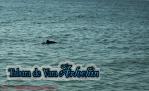 Tabara ARLECHIN- Editia de vara, Constanta 5 - 11 iulie 2013 (98 of 790)