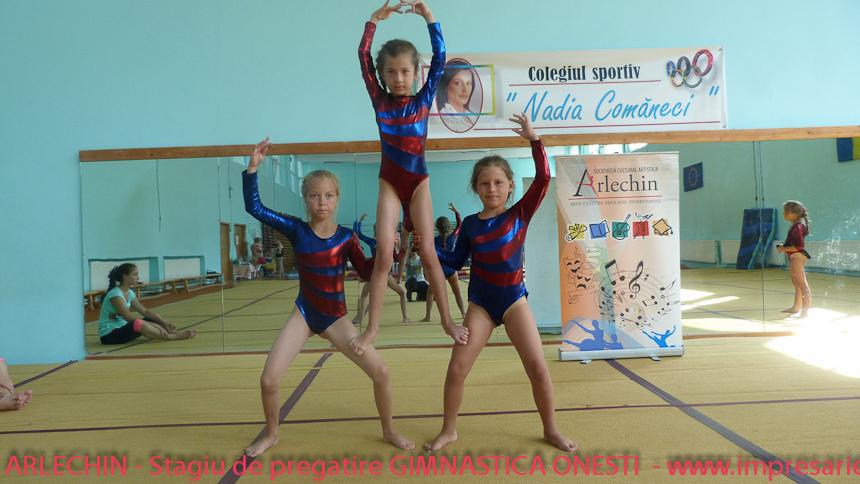 Gimnastica Botosani - ARLECHIN- Stagiu de pregatire , Onesti, 11 - 15 august 2013 (301 of 373)
