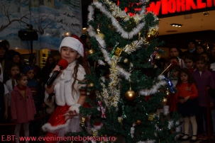 Povesti de Iarna - Botosani Shopping Center - Arlechin 20 de ani! - 22 decembrie 2013--107