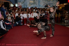 Povesti de Iarna - Botosani Shopping Center - Arlechin 20 de ani! - 22 decembrie 2013--22