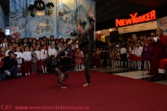 Povesti de Iarna - Botosani Shopping Center - Arlechin 20 de ani! - 22 decembrie 2013--5