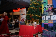 Povesti de Iarna - Botosani Shopping Center - Arlechin 20 de ani! - 22 decembrie 2013-