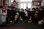 Micii Papusari - ARLECHIN Botosani-03-241