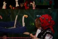 Micii Papusari - ARLECHIN Botosani-03-253