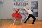 Festivalul Balet ARLECHIN - fotografii festival 2014 - marius (120 of 1016)