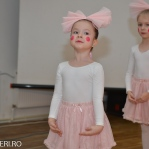 Festivalul Balet ARLECHIN - fotografii festival 2014 - marius (161 of 1016)