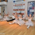 Festivalul Balet ARLECHIN - fotografii festival 2014 - marius (61 of 1016)