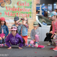 Gala Vedetelor de Martisor - Clubul ARLECHIN - Botosani Shopping Center FOTO - 2015 (217 of 359)