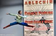 Concurs Balet ARLECHIN - Botosani - 7 - 11-2015 (41 of 352)