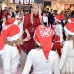 Colinde - uraturi - Clubul Arlechin - Botosani 19 -20 decembrie 2015 (160 of 441)