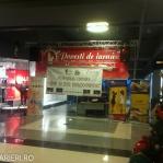 Colinde - uraturi - Clubul Arlechin - Botosani 19 -20 decembrie 2015 (284 of 441)