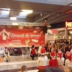 Colinde - uraturi - Clubul Arlechin - Botosani 19 -20 decembrie 2015 (364 of 441)