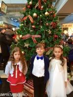 Colinde - uraturi - Clubul Arlechin - Botosani 19 -20 decembrie 2015 (438 of 441)
