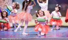 Concurs National Dans Botosani - Tinere Sperante - Clubul Arlechin- 17 iunie 2016 (126 of 570)