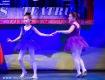 Concurs National Dans Botosani - Tinere Sperante - Clubul Arlechin- 17 iunie 2016 (23 of 570)