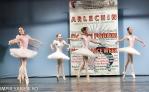 concurs-balet-arlechin-botosani-7-11-2015-153-of-352