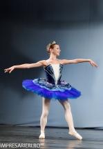 concurs-balet-arlechin-botosani-7-11-2015-258-of-352