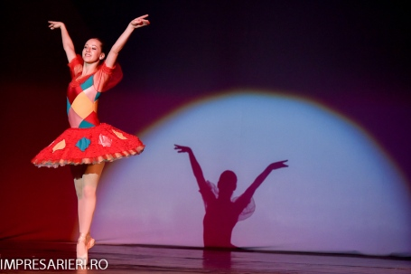 concurs-balet-arlechin-botosani-7-11-2015-3-of-352