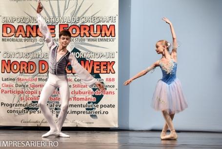 concurs-balet-arlechin-botosani-7-11-2015-86-of-352