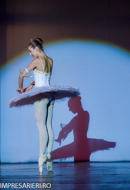 concurs-balet-arlechin-botosani-7-11-2015-95-of-352