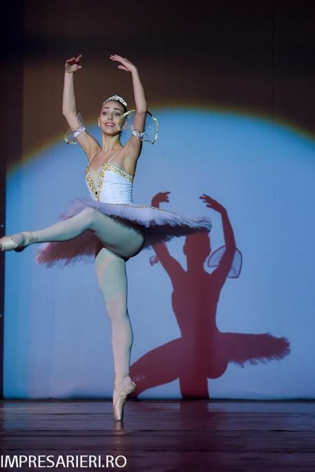 concurs-balet-arlechin-botosani-7-11-2015-97-of-352